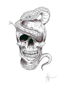 Skull_2 A.Zottoli